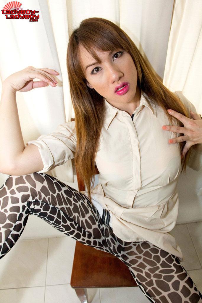 sexx-fake-asian-gallery-ladyboy-photo-nurse-porn-game
