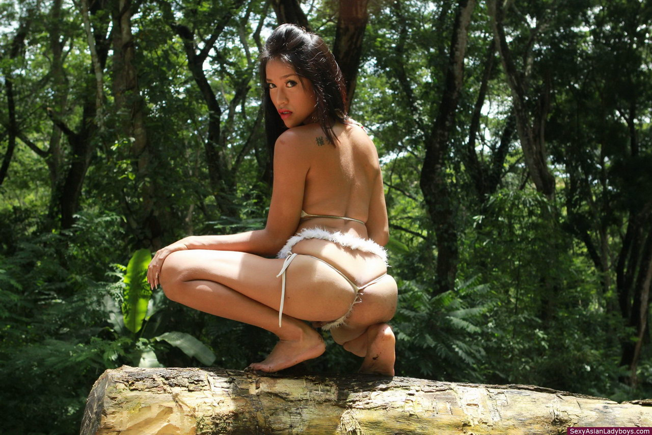 Especial. will Softcore porn in the tropics can